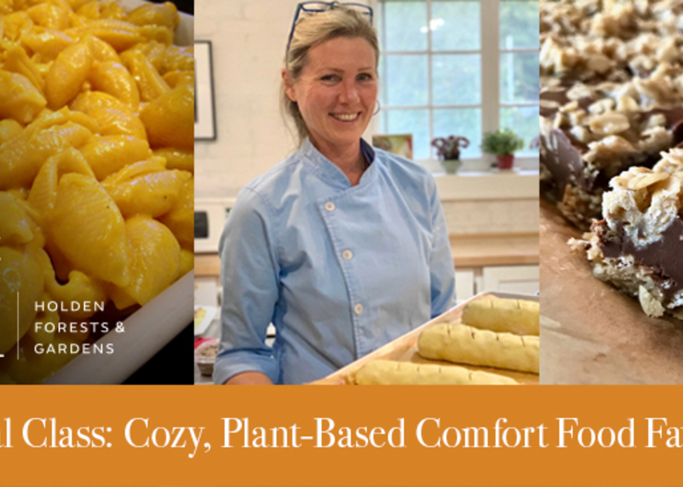 Virtual Class: Cozy, Plant-Based Comfort Food Favorites